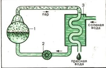 Как сделать морскую воду схема 1 класс